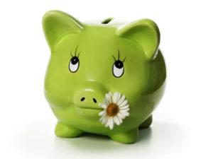 Для карты МИР также применима Копилка Сбербанка - определенная сумма или процент от суммы транзакции по карте будет перечисляться на отдельный счет