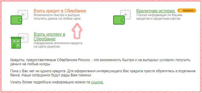 Как подать заявку на кредит в сбербанк бизнес онлайн инструкция