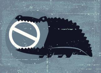 Как избежать блокировки счета физического лица банком или налоговой