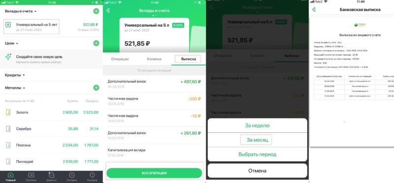 Выписка из лицевого счета в мобильном приложении Сбербанк онлайн