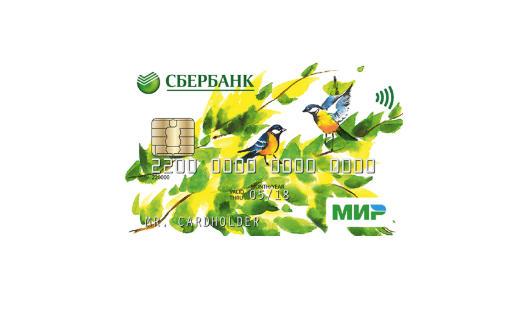 Социальная карта Сбербанка - кому можно оформить